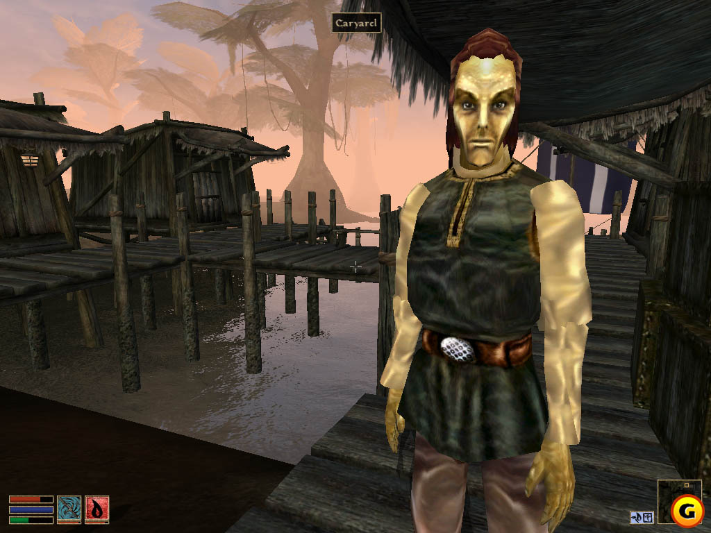 http://videogamesandgaming.files.wordpress.com/2008/12/morrowind.jpg